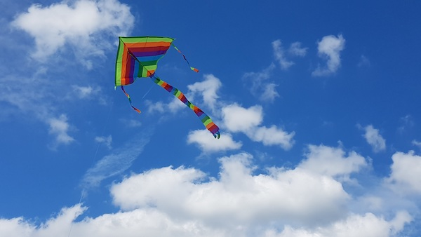 a kite in front of a blue sky